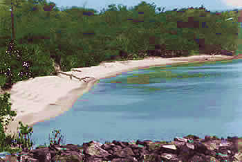 Nearby beach - Courtesy of www.culebra-kokomo.com